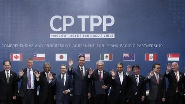 Le Royaume-Uni salue l'entree en vigueur du CPTPP en decembre prochain hinh anh 1