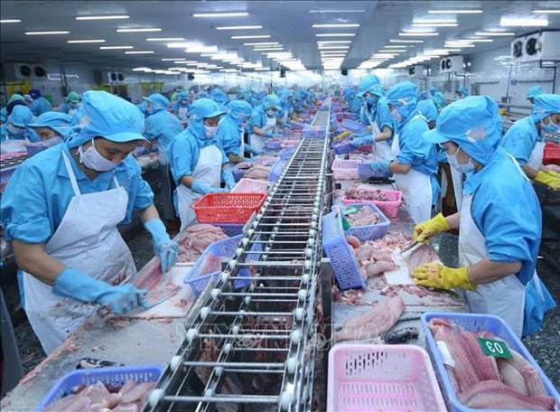 Les exportations de produits agricoles, sylvicoles et aquacoles en hausse en dix mois hinh anh 1