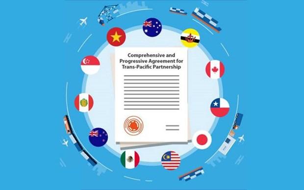 6e session de l'AN: discussions sur la ratification du CPTPP hinh anh 1
