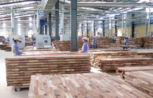 VPA/FLEGT: construction d'un marche de bois transparent et equitable hinh anh 1