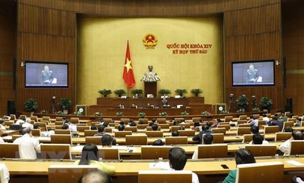 AN : les projets de loi sur l'amnistie et l'elevage en debat hinh anh 1