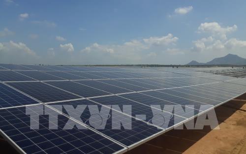 Khanh Hoa envisage de mettre en service des centrales solaires l'annee prochaine hinh anh 1