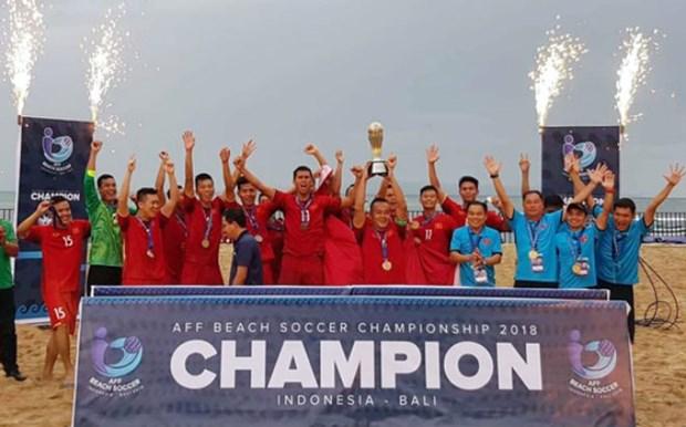 Le Vietnam remporte le Championnat de football de plage de l'ASEAN hinh anh 1