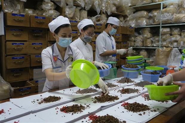 Le Vietnam et la R. de Coree cooperent dans la recherche en medecine traditionnelle hinh anh 1