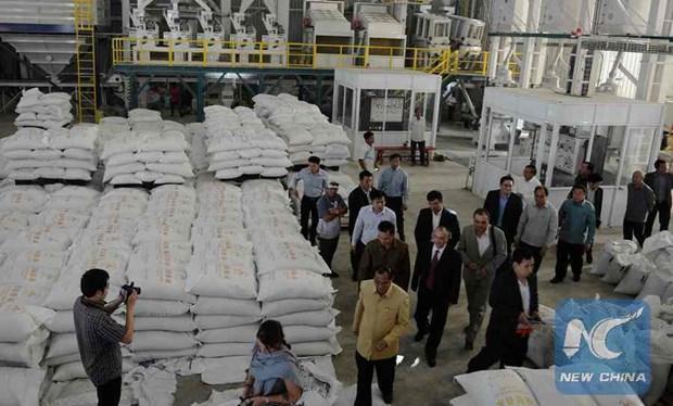 Les exportations laotiennes devraient augmenter en 2019 hinh anh 1