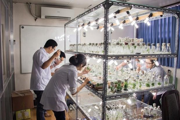 Biologie - Biotechnologie : Promotion de la cooperation entreprises-universite hinh anh 1