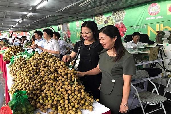 Marche australien : des perspectives prometteuses pour les entreprises vietnamiennes hinh anh 1