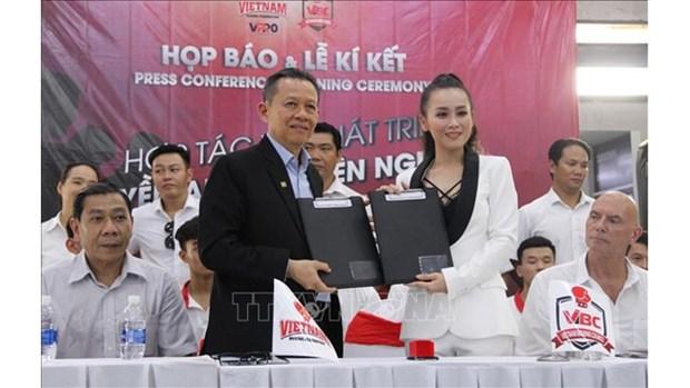 Developpement de la boxe professionnelle du Vietnam hinh anh 1