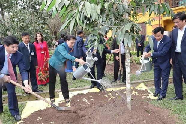 La presidente de l'AN plante un arbre dans la zone commemorative du President Ho Chi Minh hinh anh 1