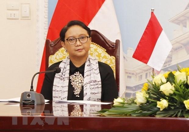 L'Indonesie fera campagne pour devenir membre du Conseil des droits de l'homme de l'ONU hinh anh 1
