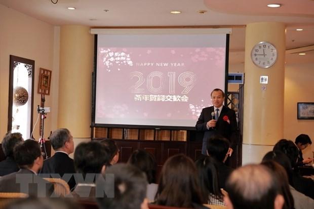 Renforcer la solidarite entre les groupes des Vietnamiens au Japon hinh anh 1