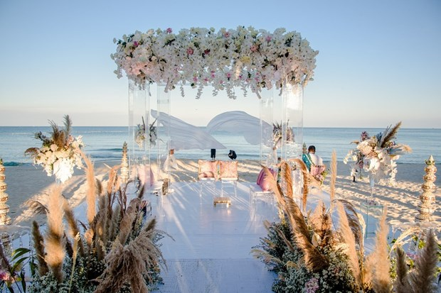 Un couple de milliardaires indiens se marie sur l'ile de Phu Quoc hinh anh 1