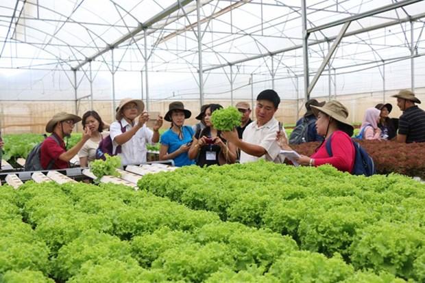 Lam Dong ameliore sa gestion de la securite sanitaire des aliments hinh anh 1