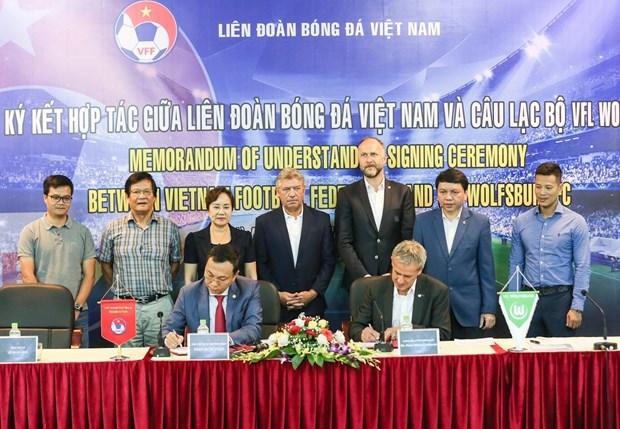 Le Vietnam et l'Allemagne cooperent pour promouvoir le developpement du football hinh anh 1