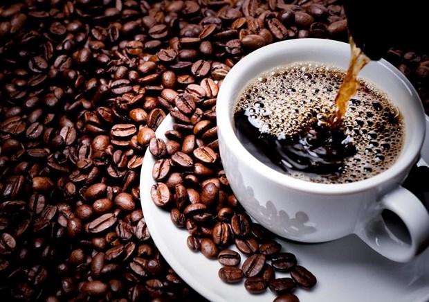 Une entreprise japonaise va construire une usine de transformation du cafe au Vietnam hinh anh 1