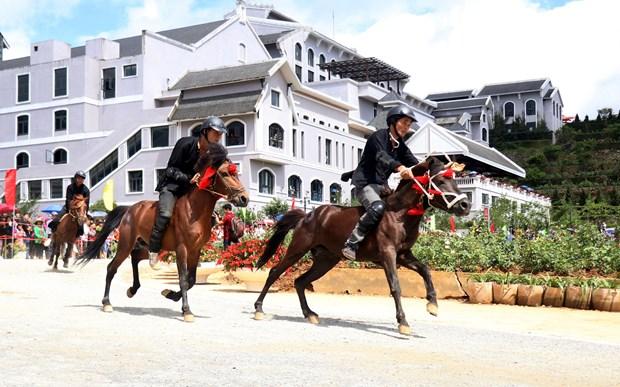 Lao Cai : Ouverture de la course hippique «Sabots de chevaux dans les nuages» hinh anh 1