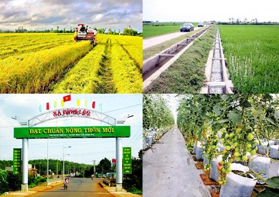 Nouvelle ruralite : 4.402 communes du pays satisfont aux normes hinh anh 1