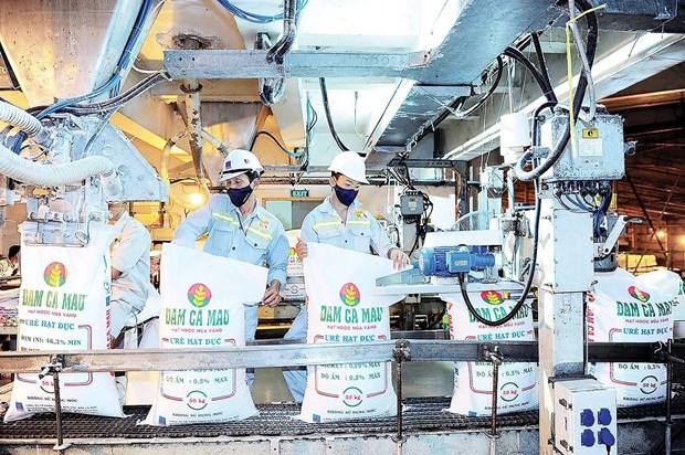 L'usine d'azote de Ca Mau celebre sa six millionieme tonne d'uree hinh anh 1