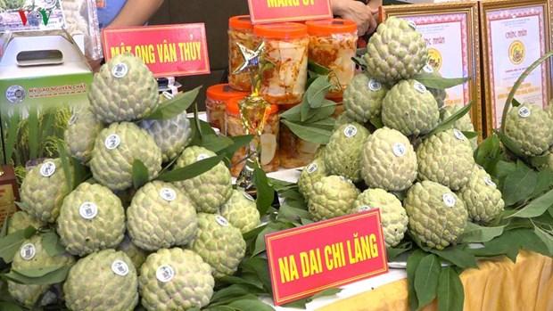 Lang Son : Bientot la 3e Journee des pommes cannelles Chi Lang hinh anh 1