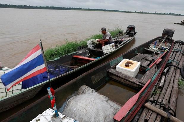 Thailande : le niveau du Mekong augmente regulierement hinh anh 1