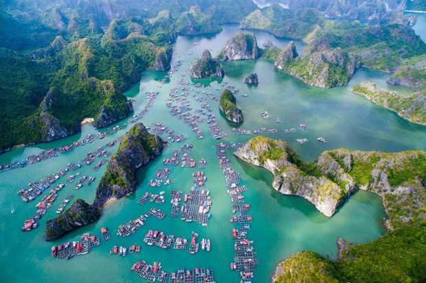 Hai Phong accueille 5,9 millions de touristes en huit mois hinh anh 1