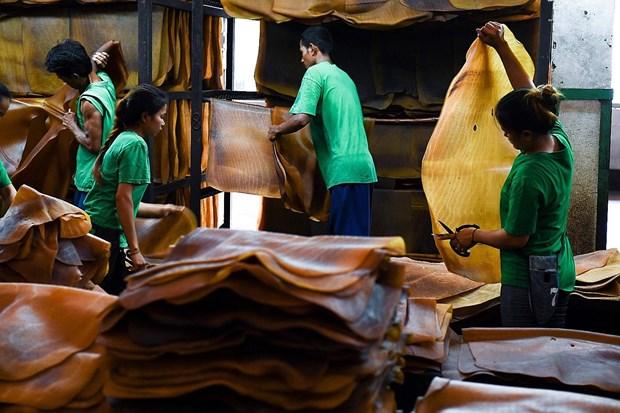 La Thailande devient le premier exportateur mondial de caoutchouc hinh anh 1