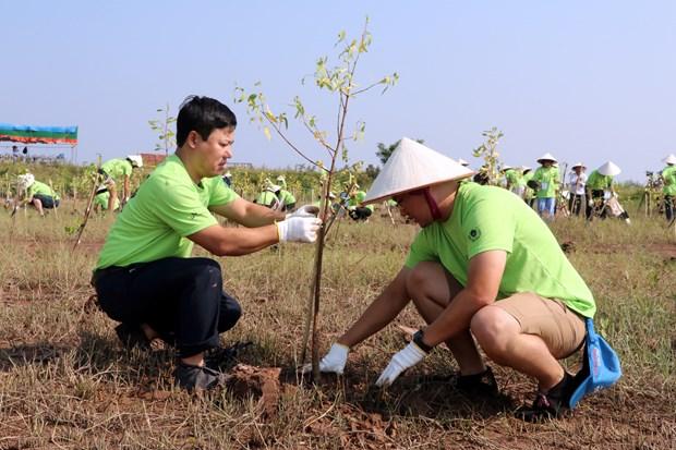 Organisation du programme « I Green We Green Vietnam » a Nam Dinh hinh anh 1
