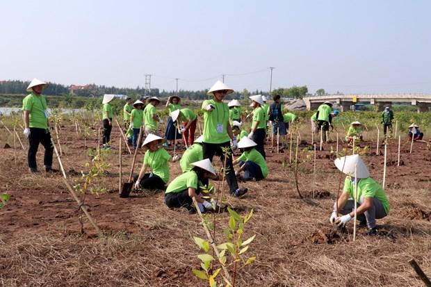 Organisation du programme « I Green We Green Vietnam » a Nam Dinh hinh anh 2