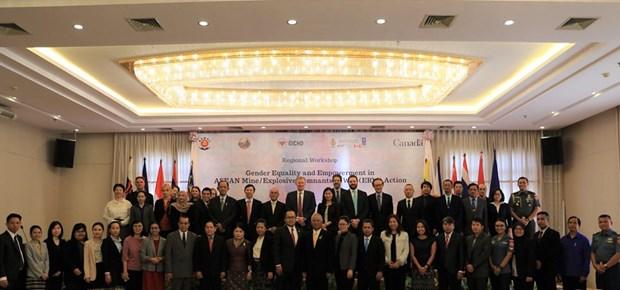 L'ASEAN renforce l'egalite des sexes et l'autonomisation dans l'action antimines hinh anh 1