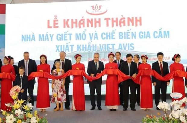 Inauguration de l'usine de transformation de la volaille Viet Avis a Thanh Hoa hinh anh 1