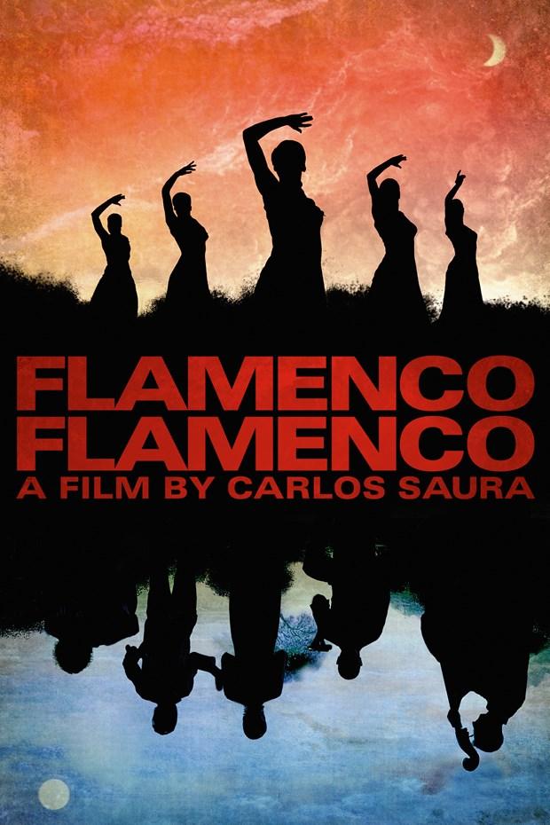 Un festival du film espagnol debute a Hue hinh anh 1