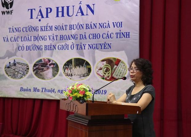 Renforcer le controle du commerce de l'ivoire et de la faune sauvage hinh anh 1