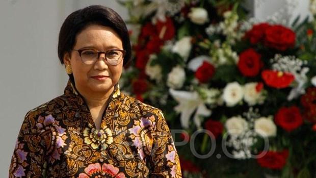 L'Indonesie renforce ses exportations vers l'Afrique hinh anh 1