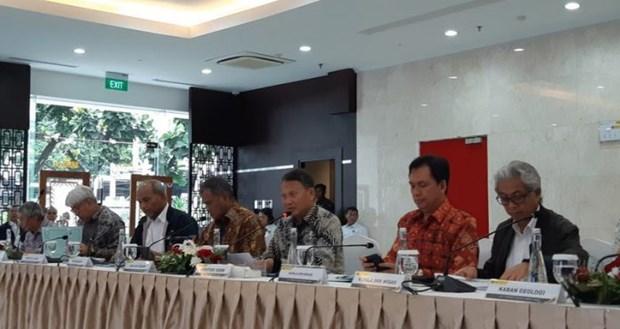 L'Indonesie rehausse son objectif d'attraction des investissements dans l'energie hinh anh 1