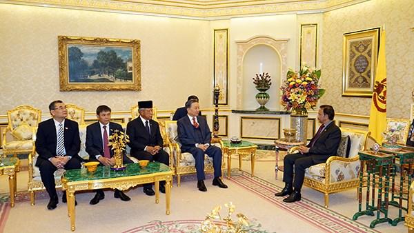 Le ministre vietnamien de la Securite publique rend une visite de courtoisie au sultan de Brunei hinh anh 1