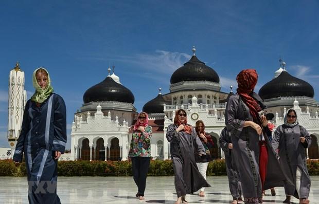 L'Indonesie se focalise sur la promotion du tourisme sur les reseaux sociaux hinh anh 1