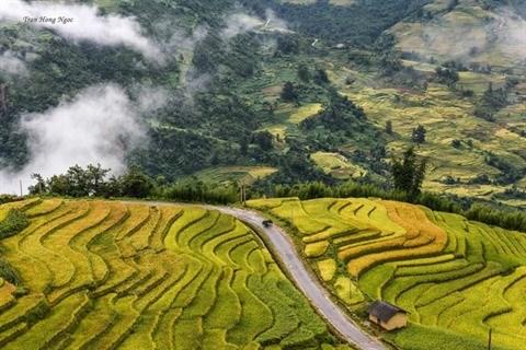 Nord-Ouest: La belle saison de Lao Cai arrive hinh anh 3