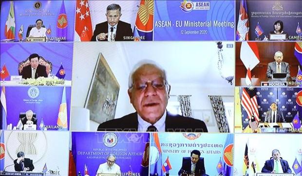 AMM-53: Cooperation UE-ASEAN renforcee pour faire face a la pandemie COVID-19 hinh anh 1