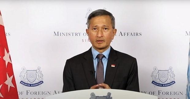 Singapore appelle a la cooperation internationale pour vaincre la pandemie de COVID-19 hinh anh 1