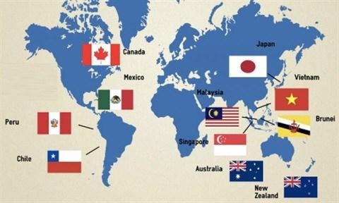 Le CPTPP, traite economique global du XXIe siecle hinh anh 2