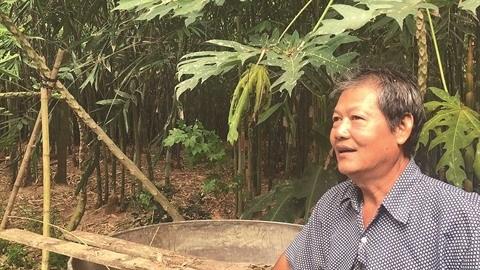Un protecteur d'aigrettes a Ðong Thap hinh anh 1