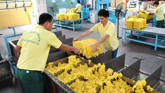 Exportation de pres de 1,4 million de tonnes de caoutchouc en 11 mois hinh anh 1