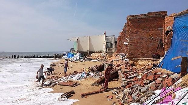 Aide gouvernementale pour la lutte anti-erosion cotiere a Binh Thuan hinh anh 1