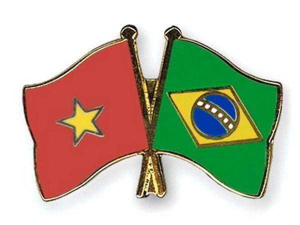 Le Bresil et le Vietnam conjuguent leurs efforts pour resserrer les relations bilaterales hinh anh 1