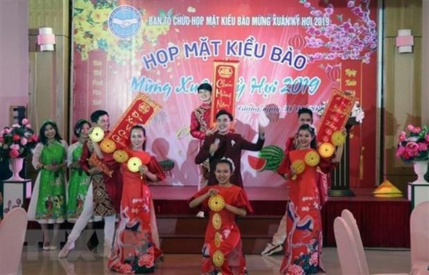 Reglement sur le Comite d'Etat charge des Vietnamiens residant a l'etranger hinh anh 1