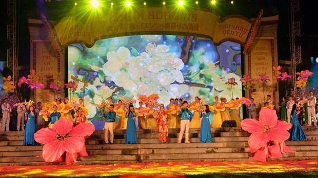 Le ''Festival de la culture japonaise'' dans la ville de Da Nang hinh anh 1
