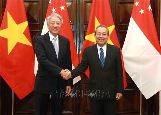 Promotion du partenariat strategique Vietnam-Singapour hinh anh 1