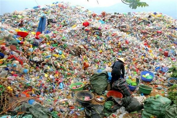 Surveillance des dechets marins et de la pollution plastique dans les zones cotieres hinh anh 1