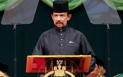 Promotion des relations de coperation Vietnam-Brunei hinh anh 1