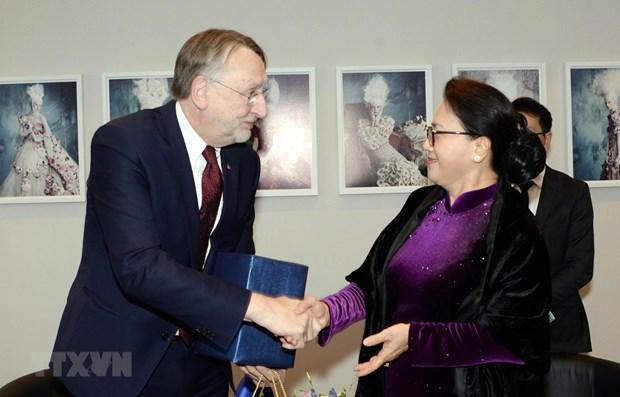 La presidente de l'AN du Vietnam rencontre un haut responsable du Parlement europeen hinh anh 1